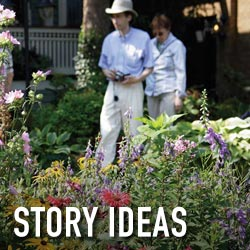 story-ideas-square