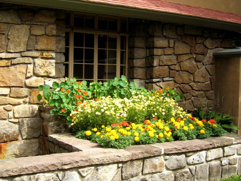 Kitchen-flower-boxes-2011-RH0.jpg