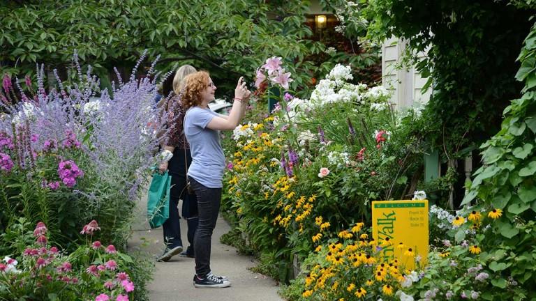 Visitors love Buffalo-style gardens