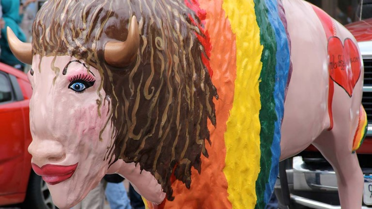 Buffalo's Pride
