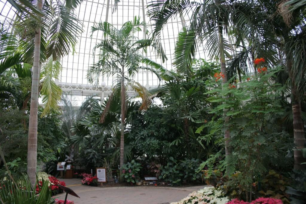 Buffalo_Botanical_Gardens_central_dome_1