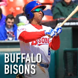 bisons-square