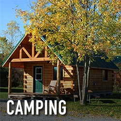 NF-camping-square