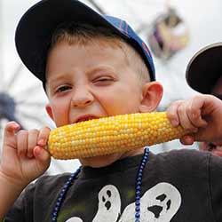 Eden-Corn-Festival-250x250