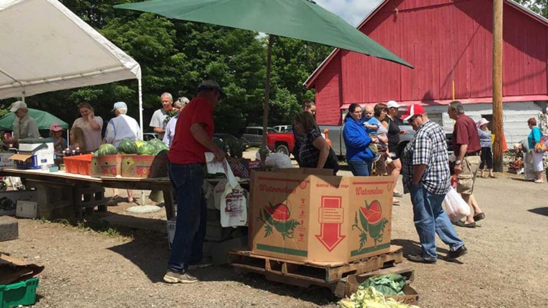 Springville Farmers / Flea Market