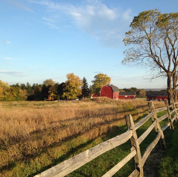 4 Reasons To Love Knox Farm State Park Visit Buffalo Niagara