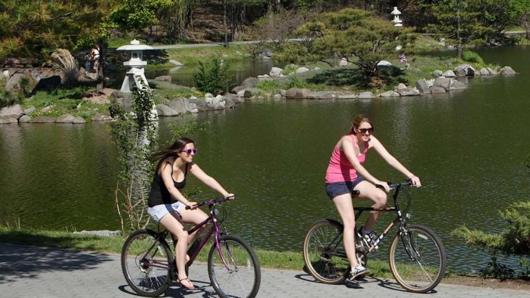 Japanese Garden in Delaware Park