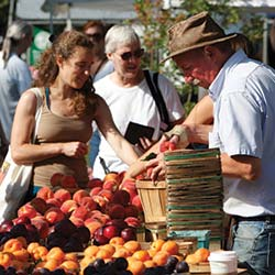 Fresh Local Farmers Markets