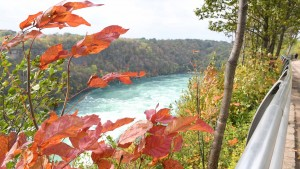 Niagara_16x9