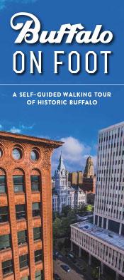 Buffalo on Foot Cover